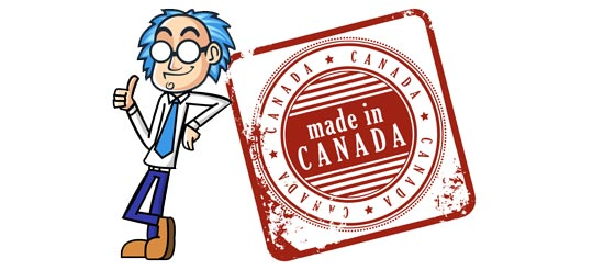 Why use a Canadian Web Design Company?