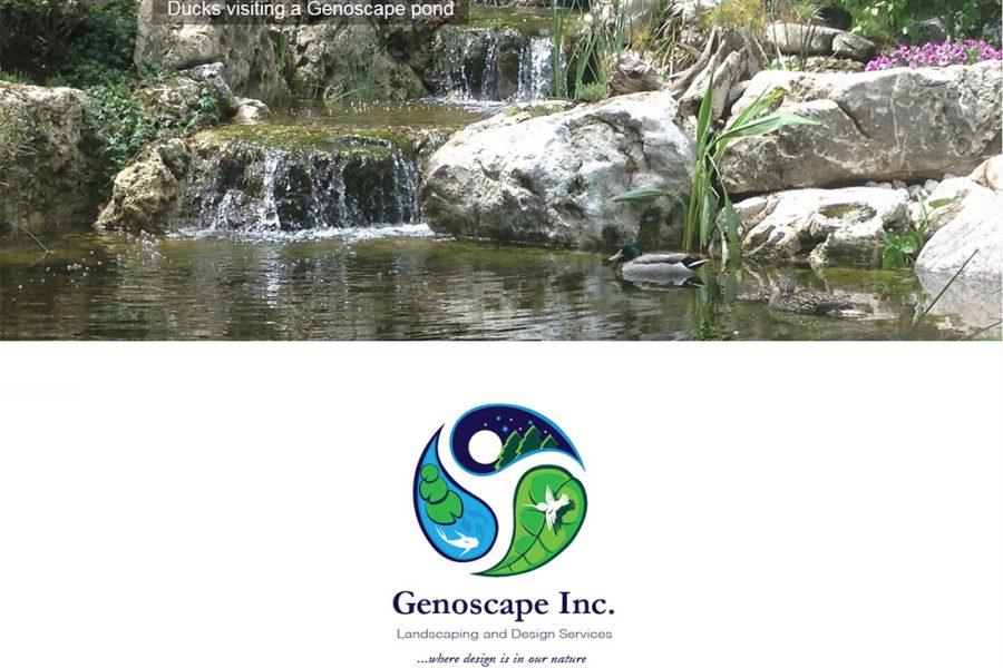 geroscape