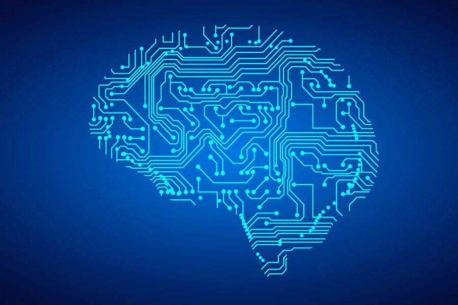 Computer neural network
